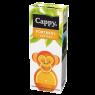 Cappy Meyve Suyu Portakal 200 ml