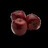 Elma Arapkızı