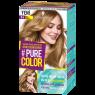 Pure Color Saç Boyası Bal-Badem 8-4