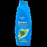 Blendax Şampuan Bitki Özlü 500 Ml