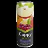 Cappy Meyve Suyu Karışık Meyveli Kutu 330 ml