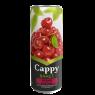 Cappy Meyve Suyu Vişne Kutu 330 ml
