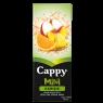 Cappy Meyve Suyu Karışık 200 ml