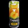 Cappy Kayısılı Meyve Suyu Kutu 330 ml