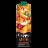 Cappy Atom Meyve Suyu 1 lt