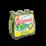 Özkaynak Maden Suyu C Plus Limonlu 6x200 ml