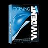 Vivident Storming Damla Sakızı Aromalı 33 gr