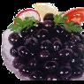 Bağcı Premium Siyah Zeytin kg